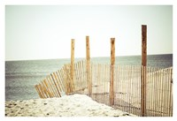 Wooden Beach Fence Fine Art Print