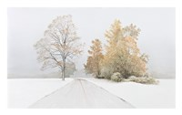 Autumn Snowfall Fine Art Print