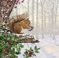 Christmas Squirrel Fine Art Print