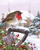 Robin 1 Fine Art Print