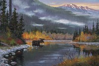 South Fork Moose Fine Art Print