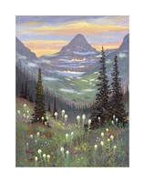 Logan Pass Fine Art Print