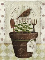 Herb Pot Mint Fine Art Print