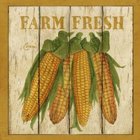 Farm Fresh Corn Framed Print