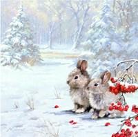 Woodland Rabbits Fine Art Print