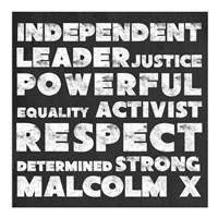 Respect Malcolm X Fine Art Print