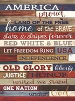 America Proud Framed Print