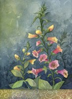 Foxgloves Fine Art Print