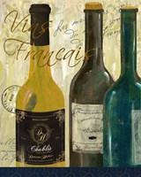 Vins De France Framed Print