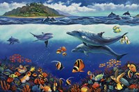 Reef Serenade Fine Art Print