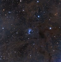 The bright star VdB 16, dust and nebulosity in the Constellation Aries Fine Art Print