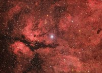 The Sadr region in the Constellation Cygnus Fine Art Print