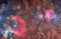 Widefield view of Orion Nebula and Horsehead Nebula Fine Art Print