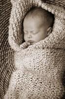 Baby In Knit Fine Art Print