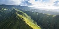 Hawaii Loa Ridge Fine Art Print