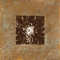 Dahlia on Copper I Fine Art Print