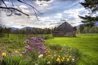 Spring Barn Fine Art Print