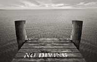 No Diving Fine Art Print