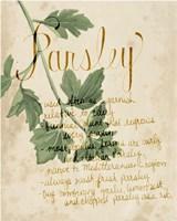 Herb Study V Framed Print