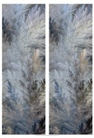 2-Up Pampas Panels II Framed Print