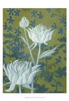 Wild Chrysanthemums II Framed Print