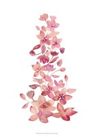 Blossom Falls II Framed Print