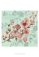 Cherry Blossom Shadows I Framed Print