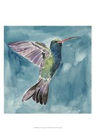 Watercolor Hummingbird I Framed Print