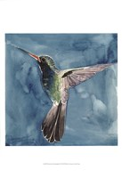 Watercolor Hummingbird II Framed Print