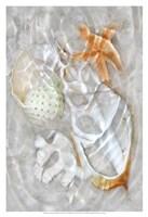 Underwater Light Waves IX Fine Art Print