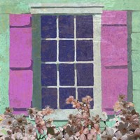 Window Floral II Framed Print