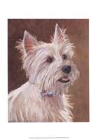 Mac West Highland Terrier Fine Art Print
