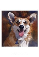 Ben Welsh Corgi Framed Print