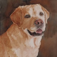 Cody Yellow Lab Fine Art Print