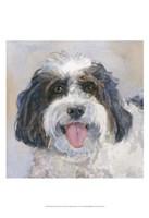 Archie Daisy Dog Fine Art Print