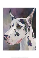 Mary Kay Great Dane Fine Art Print