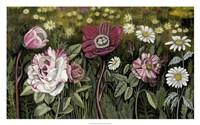 Vintage Garden I Framed Print