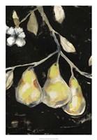 Fresh Pears I Framed Print