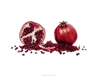 Watercolor Pomegranate Fine Art Print