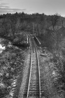 Lonely Tracks B&W Fine Art Print