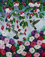 Hummingbird Heaven Fine Art Print