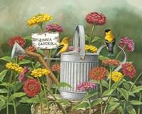 Zinnia Garden Fine Art Print