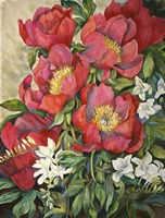 Red Peonies Fine Art Print