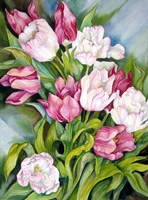 Light Pink And Dark Tulips Fine Art Print