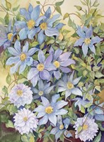 Blue Clematis Fine Art Print