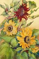 Rust Sunflower Fine Art Print