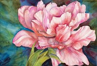 Double Tulip Fine Art Print