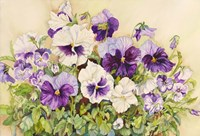 White and Purple Pansies Fine Art Print