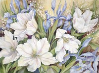 White Tulips/ Blue Iris Fine Art Print