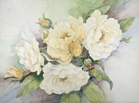 Cluster Of Yellow Roses Fine Art Print